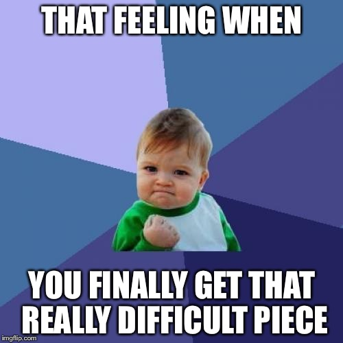 Success Kid Meme | THAT FEELING WHEN YOU FINALLY GET THAT REALLY DIFFICULT PIECE | image tagged in memes,success kid | made w/ Imgflip meme maker