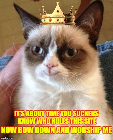 Imgflip, Meet Your New Queen! ♛ | IT'S ABOUT TIME YOU SUCKERS KNOW WHO RULES THIS SITE NOW BOW DOWN AND WORSHIP ME | image tagged in smiling grumpy cat,grumpy cat is the queen of imgflip,grumpy cat,imgflip users,meanwhile on imgflip,craziness_all_the_way | made w/ Imgflip meme maker