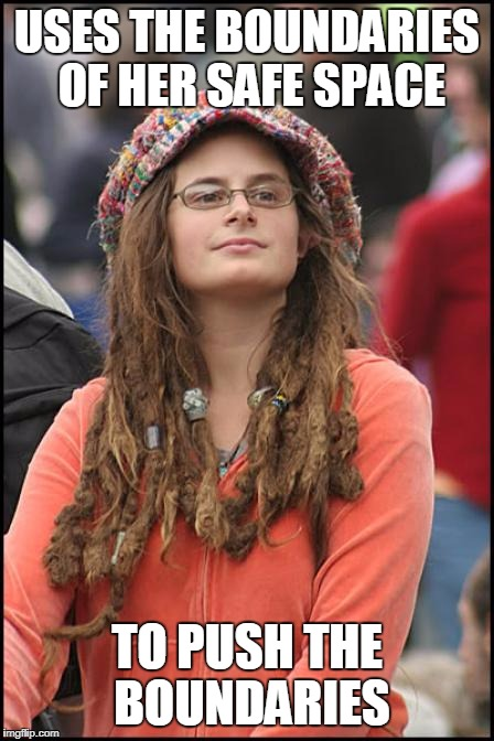 Hippy girl | USES THE BOUNDARIES OF HER SAFE SPACE TO PUSH THE BOUNDARIES | image tagged in hippy girl | made w/ Imgflip meme maker