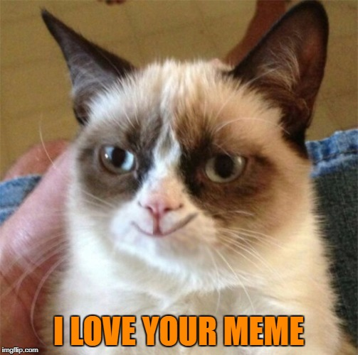 I LOVE YOUR MEME | made w/ Imgflip meme maker