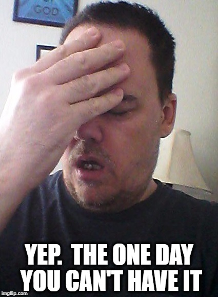 face palm | YEP.  THE ONE DAY YOU CAN'T HAVE IT | image tagged in face palm | made w/ Imgflip meme maker