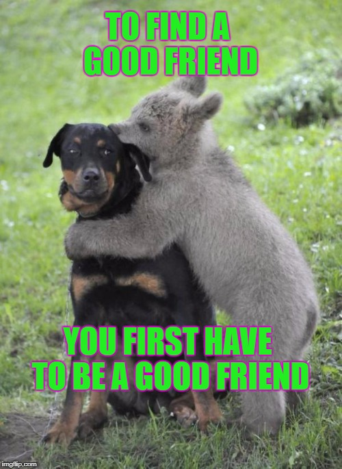 friendship  | TO FIND A GOOD FRIEND YOU FIRST HAVE TO BE A GOOD FRIEND | image tagged in friendship | made w/ Imgflip meme maker