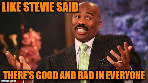 Steve Harvey Meme | LIKE STEVIE SAID THERE'S GOOD AND BAD IN EVERYONE | image tagged in memes,steve harvey | made w/ Imgflip meme maker