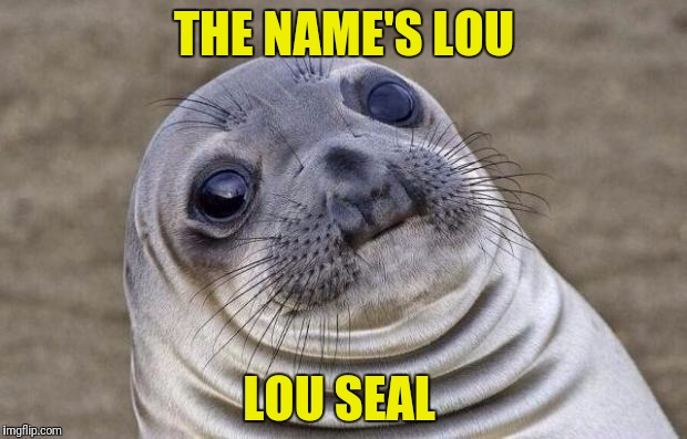 Awkward Moment Sealion Meme | THE NAME'S LOU LOU SEAL | image tagged in memes,awkward moment sealion | made w/ Imgflip meme maker