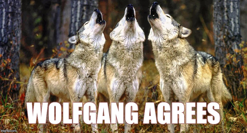 WOLFGANG AGREES | made w/ Imgflip meme maker