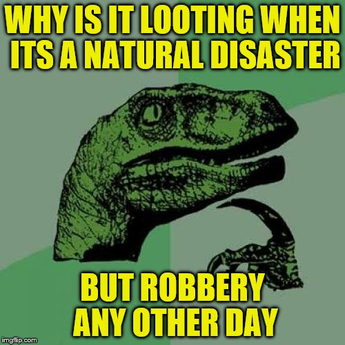 Philosoraptor Meme | WHY IS IT LOOTING WHEN ITS A NATURAL DISASTER BUT ROBBERY ANY OTHER DAY | image tagged in memes,philosoraptor | made w/ Imgflip meme maker