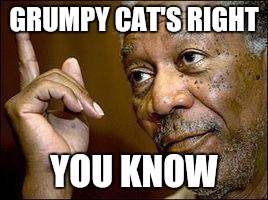 Memes, He's Right You Know | GRUMPY CAT'S RIGHT YOU KNOW | image tagged in memes,he's right you know | made w/ Imgflip meme maker