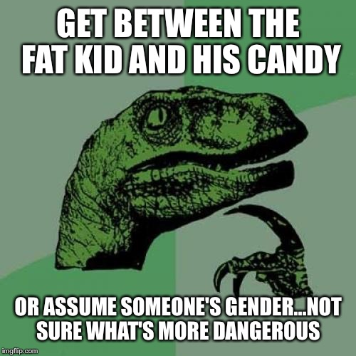 Philosoraptor Meme | GET BETWEEN THE FAT KID AND HIS CANDY OR ASSUME SOMEONE'S GENDER...NOT SURE WHAT'S MORE DANGEROUS | image tagged in memes,philosoraptor | made w/ Imgflip meme maker