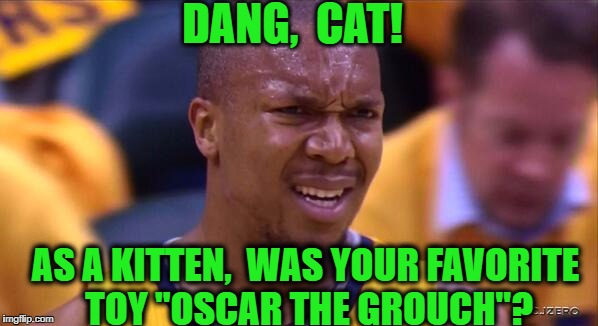 "huh | DANG,  CAT! AS A KITTEN,  WAS YOUR FAVORITE TOY ""OSCAR THE GROUCH""? 