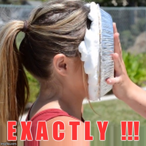 Memes, Pie In Face | E X A C T L Y   !!! | image tagged in memes,pie in face | made w/ Imgflip meme maker