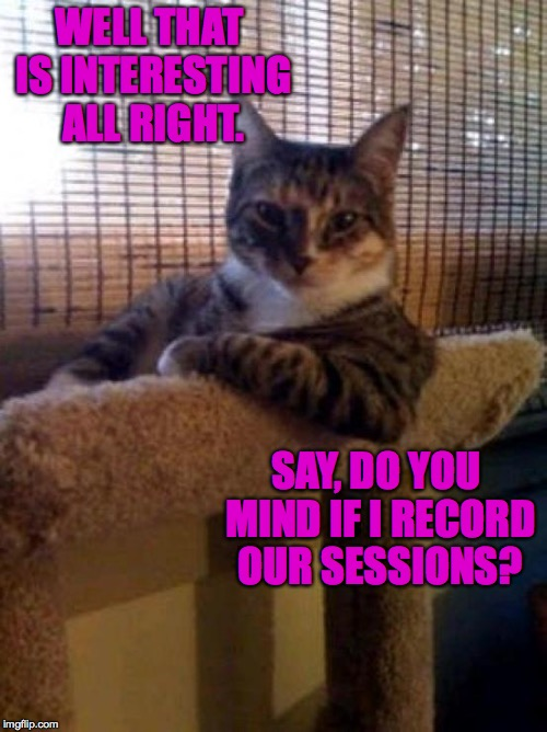 WELL THAT IS INTERESTING ALL RIGHT. SAY, DO YOU MIND IF I RECORD OUR SESSIONS? | made w/ Imgflip meme maker