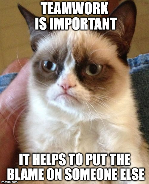 The true meaning of teamwork | TEAMWORK IS IMPORTANT IT HELPS TO PUT THE BLAME ON SOMEONE ELSE | image tagged in memes,grumpy cat,teamwork,blame | made w/ Imgflip meme maker