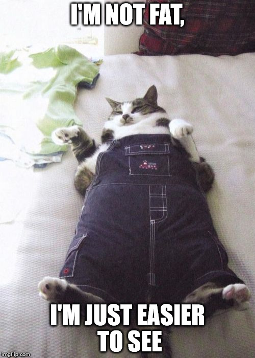 Easier to see | I'M NOT FAT, I'M JUST EASIER TO SEE | image tagged in memes,fat cat,easier to see,fat | made w/ Imgflip meme maker