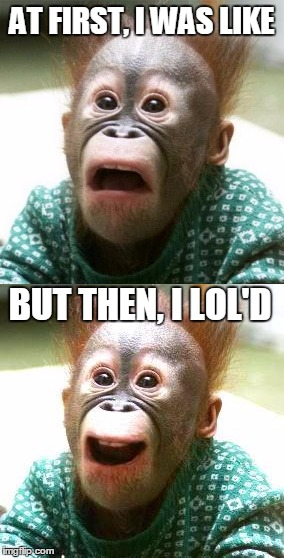 At First, i was like, But Then, i lol'd | AT FIRST, I WAS LIKE BUT THEN, I LOL'D | image tagged in shocked monkey | made w/ Imgflip meme maker