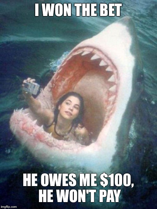 Shark | I WON THE BET HE OWES ME $100, HE WON'T PAY | image tagged in shark | made w/ Imgflip meme maker