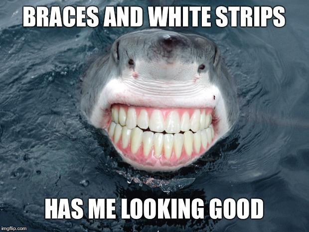 sharkteeth | BRACES AND WHITE STRIPS HAS ME LOOKING GOOD | image tagged in sharkteeth | made w/ Imgflip meme maker
