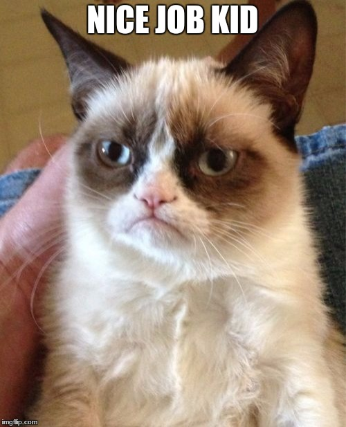 Grumpy Cat Meme | NICE JOB KID | image tagged in memes,grumpy cat | made w/ Imgflip meme maker