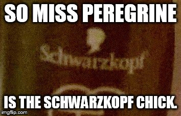 Miss Peregrine Secret Identity | SO MISS PEREGRINE IS THE SCHWARZKOPF CHICK. | image tagged in funny,memes,new meme | made w/ Imgflip meme maker