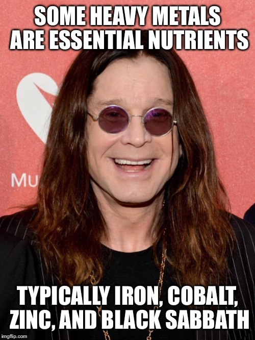 SOME HEAVY METALS ARE ESSENTIAL NUTRIENTS TYPICALLY IRON, COBALT, ZINC, AND BLACK SABBATH | made w/ Imgflip meme maker