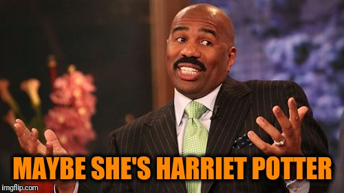 Steve Harvey Meme | MAYBE SHE'S HARRIET POTTER | image tagged in memes,steve harvey | made w/ Imgflip meme maker
