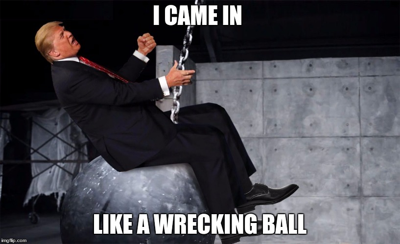 I CAME IN LIKE A WRECKING BALL | image tagged in donald trump wrecking ball | made w/ Imgflip meme maker