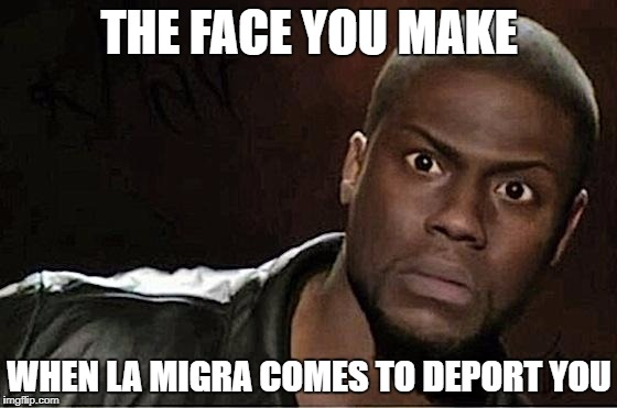 Kevin Hart vs. La Migra | THE FACE YOU MAKE WHEN LA MIGRA COMES TO DEPORT YOU | image tagged in kevin hart,illegal immigrant,immigration,border patrol,trump immigration policy | made w/ Imgflip meme maker