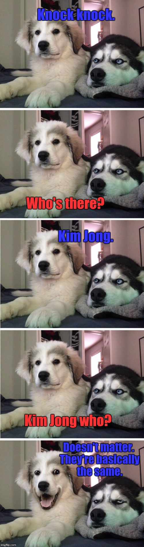 My worst knock knock joke so far... | Knock knock. Who's there? Kim Jong. Kim Jong who? Doesn't matter. They're basically the same. | image tagged in knock knock dogs | made w/ Imgflip meme maker