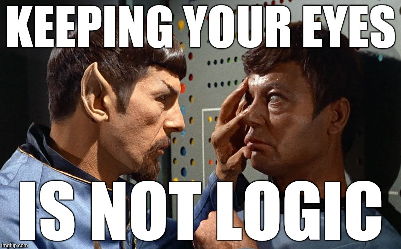 spock n bones | KEEPING YOUR EYES IS NOT LOGIC | image tagged in spock n bones | made w/ Imgflip meme maker