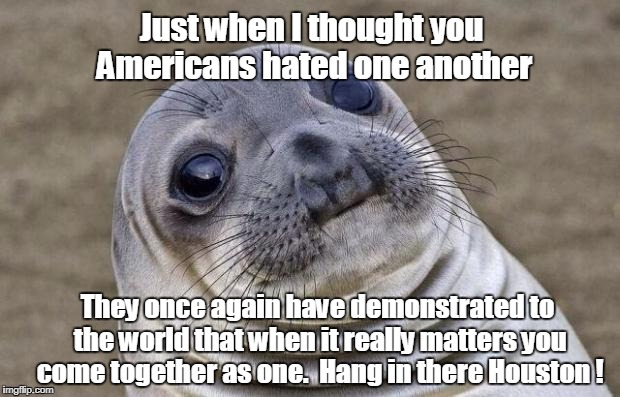 Awkward Moment Sealion Meme | Just when I thought you Americans hated one another They once again have demonstrated to the world that when it really matters you come toge | image tagged in memes,awkward moment sealion | made w/ Imgflip meme maker