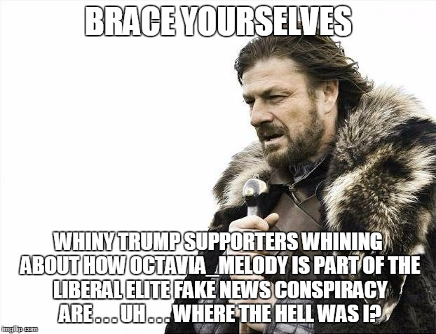 Brace Yourselves X is Coming Meme | BRACE YOURSELVES WHINY TRUMP SUPPORTERS WHINING ABOUT HOW OCTAVIA_MELODY IS PART OF THE LIBERAL ELITE FAKE NEWS CONSPIRACY ARE . . . UH . .  | image tagged in memes,brace yourselves x is coming | made w/ Imgflip meme maker