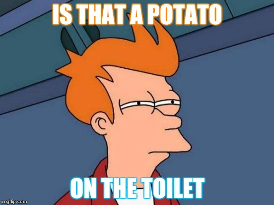 Futurama Fry Meme | IS THAT A POTATO ON THE TOILET | image tagged in memes,futurama fry | made w/ Imgflip meme maker