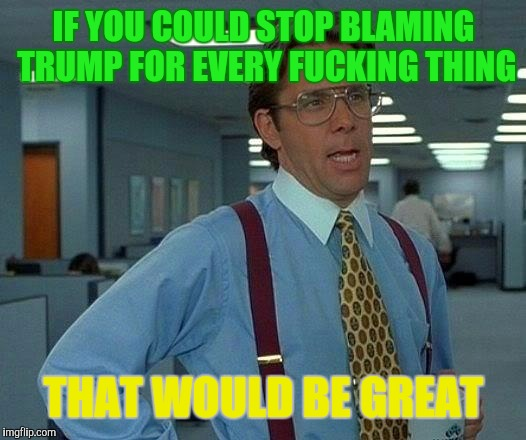 That Would Be Great Meme | IF YOU COULD STOP BLAMING TRUMP FOR EVERY F**KING THING THAT WOULD BE GREAT | image tagged in memes,that would be great | made w/ Imgflip meme maker