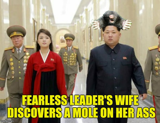 FEARLESS LEADER'S WIFE DISCOVERS A MOLE ON HER ASS | made w/ Imgflip meme maker