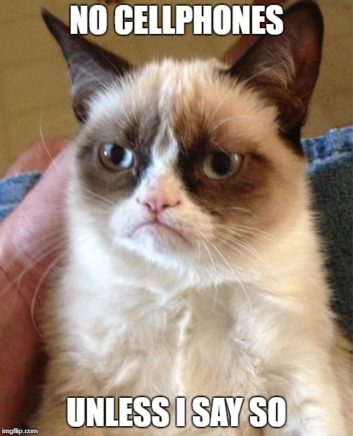 Grumpy Cat Meme | NO CELLPHONES UNLESS I SAY SO | image tagged in memes,grumpy cat | made w/ Imgflip meme maker