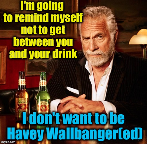 I'm going to remind myself not to get between you and your drink I don't want to be Havey Wallbanger(ed) | made w/ Imgflip meme maker