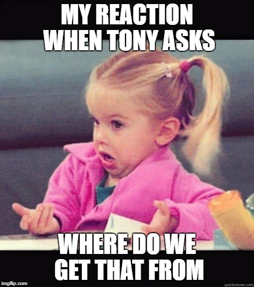 I don't know girl | MY REACTION WHEN TONY ASKS WHERE DO WE GET THAT FROM | image tagged in i don't know girl | made w/ Imgflip meme maker