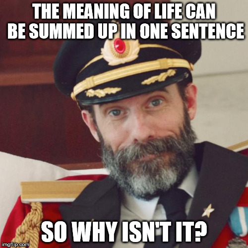 Captain Obvious | THE MEANING OF LIFE CAN BE SUMMED UP IN ONE SENTENCE SO WHY ISN'T IT? | image tagged in captain obvious | made w/ Imgflip meme maker