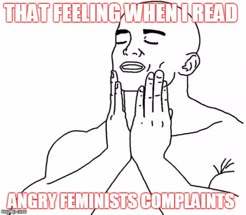 THAT FEELING WHEN I READ ANGRY FEMINISTS COMPLAINTS | made w/ Imgflip meme maker