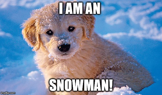 Snowman Dog! | I AM AN SNOWMAN! | image tagged in memes | made w/ Imgflip meme maker