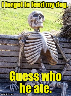 Waiting Skeleton Meme | I forgot to feed my dog. Guess who he ate. | image tagged in memes,waiting skeleton | made w/ Imgflip meme maker