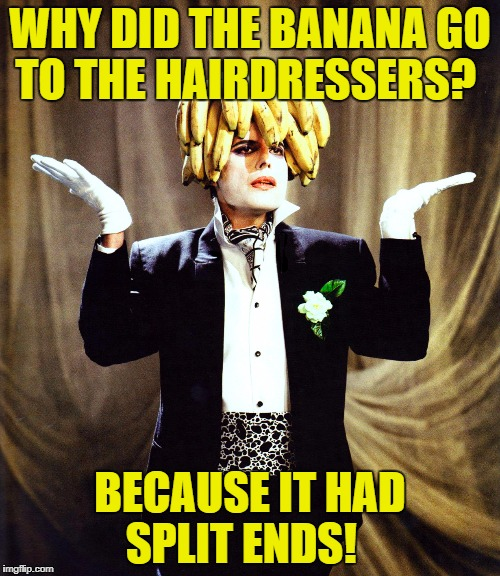 WHY DID THE BANANA GO TO THE HAIRDRESSERS? BECAUSE IT HAD SPLIT ENDS! | image tagged in banana tree | made w/ Imgflip meme maker