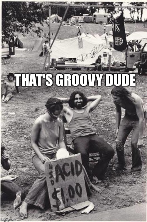 THAT'S GROOVY DUDE | image tagged in funny meme,crazy,memes,best meme,friends | made w/ Imgflip meme maker