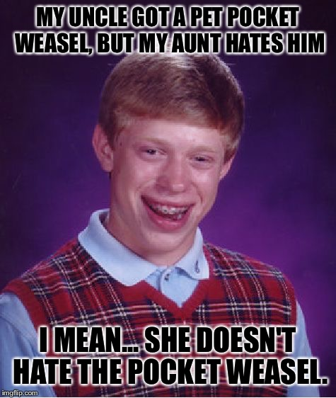 Well, poor Uncle | MY UNCLE GOT A PET POCKET WEASEL, BUT MY AUNT HATES HIM I MEAN... SHE DOESN'T HATE THE POCKET WEASEL. | image tagged in memes,bad luck brian,uncle,pocket,weasel | made w/ Imgflip meme maker