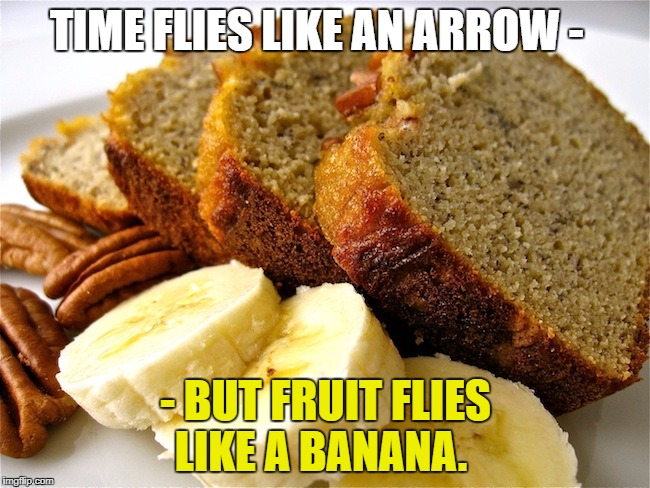 TIME FLIES LIKE AN ARROW - - BUT FRUIT FLIES LIKE A BANANA. | image tagged in banana bread | made w/ Imgflip meme maker