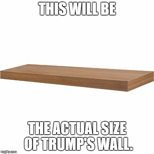 THIS WILL BE THE ACTUAL SIZE OF TRUMP'S WALL. | image tagged in accuracy | made w/ Imgflip meme maker