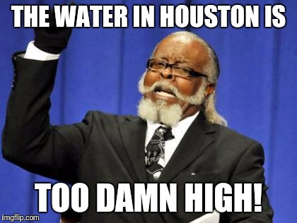 Too Damn High Meme | THE WATER IN HOUSTON IS TOO DAMN HIGH! | image tagged in memes,too damn high | made w/ Imgflip meme maker