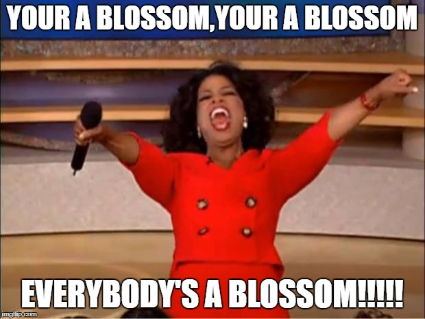 Oprah You Get A Meme | YOUR A BLOSSOM,YOUR A BLOSSOM EVERYBODY'S A BLOSSOM!!!!! | image tagged in memes,oprah you get a | made w/ Imgflip meme maker