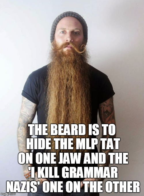 THE BEARD IS TO HIDE THE MLP TAT ON ONE JAW AND THE 'I KILL GRAMMAR NAZIS' ONE ON THE OTHER | made w/ Imgflip meme maker