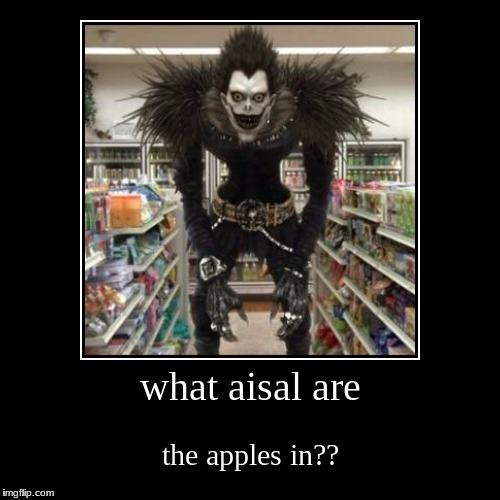 what aisal are | the apples in?? | image tagged in funny,demotivationals | made w/ Imgflip demotivational maker