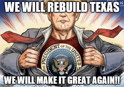 WE WILL REBUILD TEXAS WE WILL MAKE IT GREAT AGAIN!! | image tagged in trump,funny memes,black girl wat,success kid,successful black man,black lives matter | made w/ Imgflip meme maker